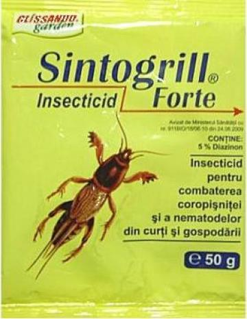Insecticid Sintogrill Super