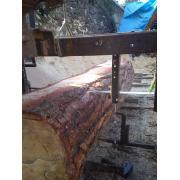 Bustean pin de la Arba Sigmar Srl