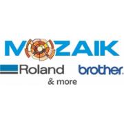 Mozaik Consulting Srl