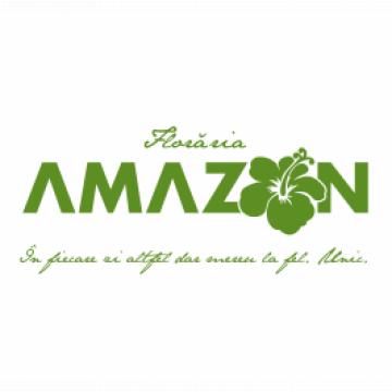 Amazon Com Srl