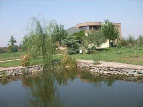 Amenajare iazuri, lacuri, helestee, cascade de la Garden Rustic Spatii Verzi