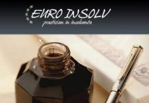Servicii de reorganizare si faliment firme, companii si IMM de la Euro Insolv