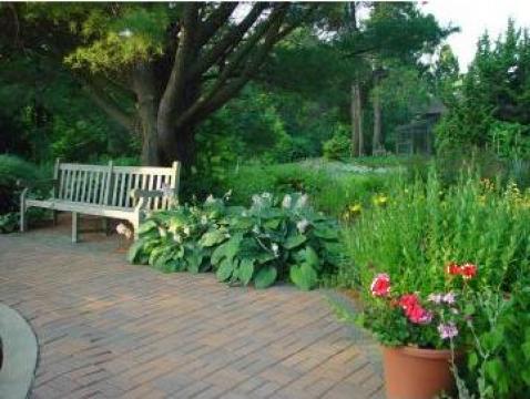Intretinere, ingrijire gradini de la Special Garden Design Srl