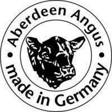 Juninci vaci gestante si tauri Angus rasa de carne