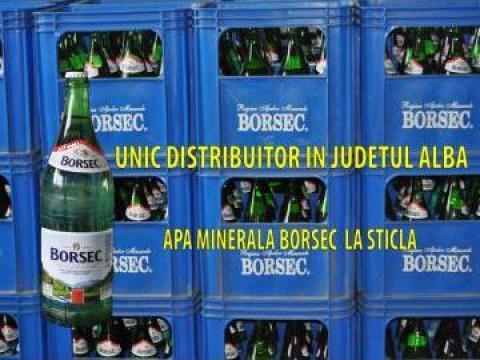 Apa minerala Borsec de la Adi & Marius Top Srl