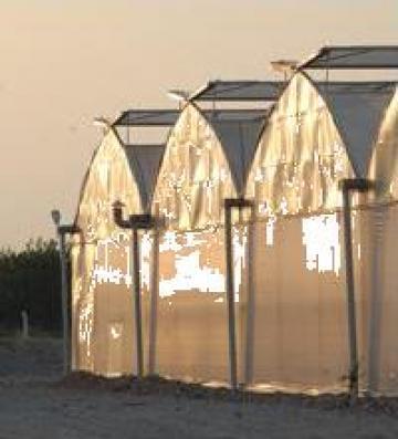 Folie profesionala pentru sere si solarii Sotrafa de la Marcoser
