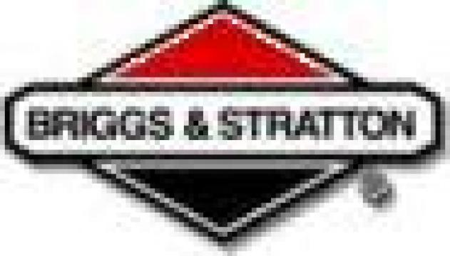 Motoare Briggs&Stratton de la Sudofim Serv Srl