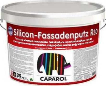 Tencuiala siliconica Caparol - Silicon Fassadenputz