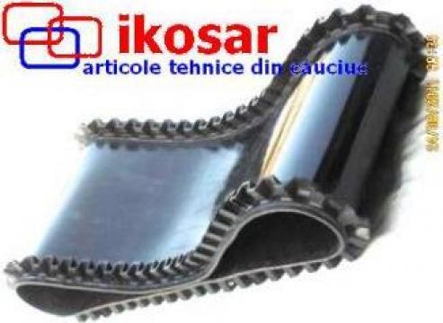 Banda transportoare inchisa de la Ikosar Srl