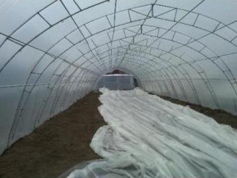 Solarii agricultura pe structura metalica de la Rexton Constructii Hale Si Studiouri Tv Grup