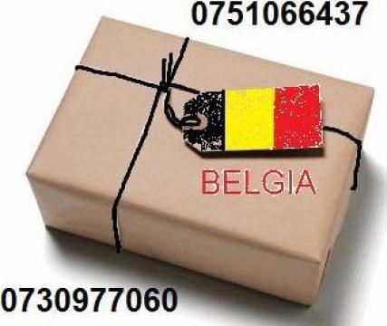 Transport colete Bruxelles, Genk, Antwerp de la Lucee Marfa Srl