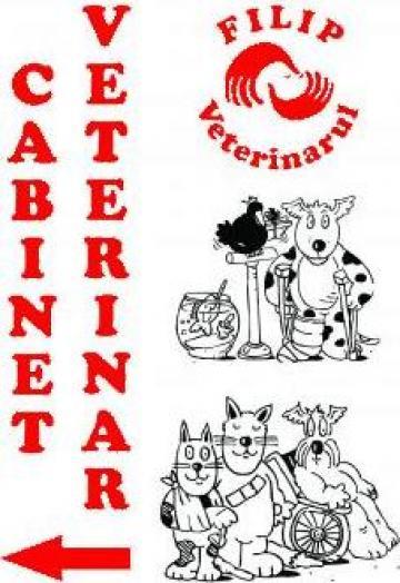 Servicii Cabinet veterinar