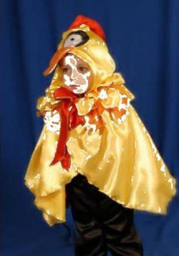 Costum de serbare pentru copii Puisor de la Costume De Serbare Pompilia Silaescu
