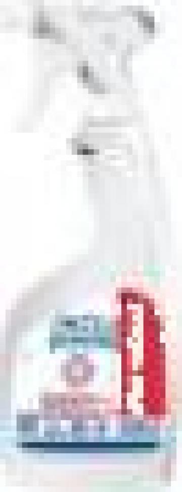 Detergent si dezinfectant Spot Igienic de la G & G Paper Srl