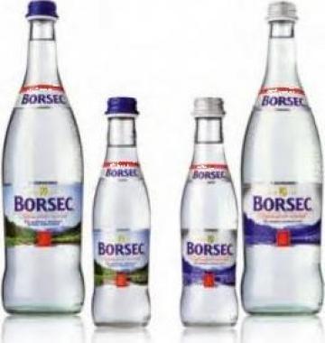 Apa minerala si plata Borsec 0,75 litri sticla de la Daniel Srl