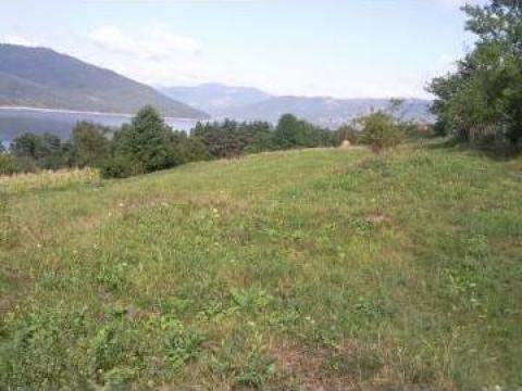 Teren intravilan zona Mt. Ceahlau de la