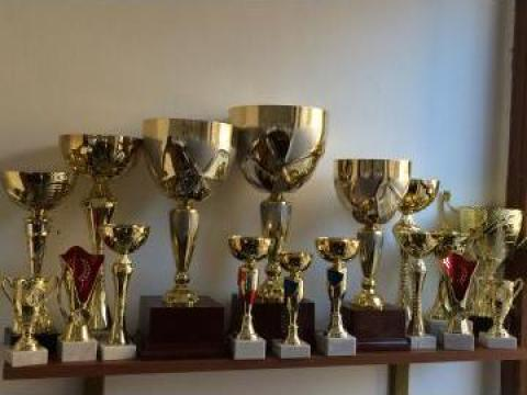 Cupe sportivi