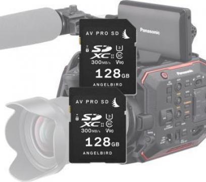Card memorie Angelbird AVP MP-EVA1 match pack 2 X 128Gb de la West Buy SRL