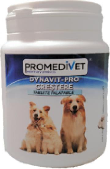 Supliment nutritiv pentru caini Dynavit-Pro crestere de la Promedivet