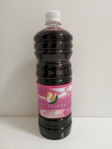 Sirop pentru granita 1 litru coacaze de la Cristian Food Industry Srl.