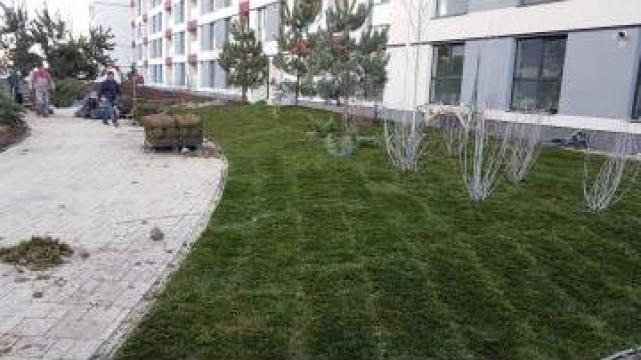 Lucrari de amenajare spatiu verde de la Winland Srl