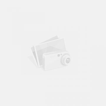 Piese lemn de sah Staunton 6 in punga de plastic de la Chess Events Srl