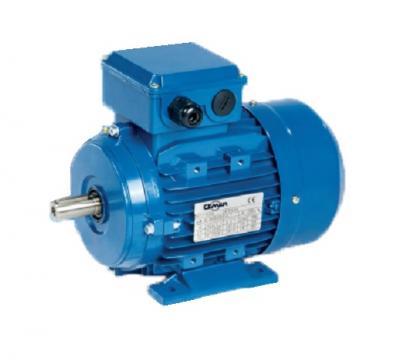 Motor electric asincron monofazat 2 kW, 1500 rpm, 4ML100 L1 de la Micul Gospodar