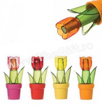 Solnita in forma de floare in ghiveci de la Thegift.ro - Cadouri Online