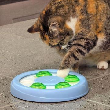 Jucarie interactiva pisici si catei - Wenko de la Plasma Trade Srl (happymax.ro)