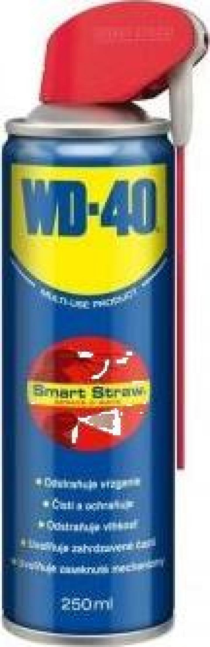 Lubrifiant WD-40 Smart Straw, capacitate 250 ml